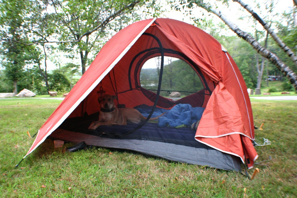 Itu0027s too bulky for backpacking so youu0027ll be better off with Eurika ones BUT for c&ing in tent sites/not days hike from your car its an awesome tent. & Coleman Hooligan 2 Backpacking Tent Review | Outdoor Adventures ...